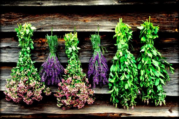 Αρωματικά φυτά, για το μπαλκόνι σας